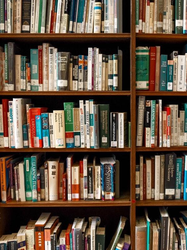 shaver lake library